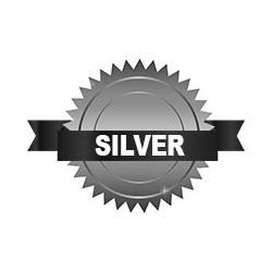 Silver Sponsors